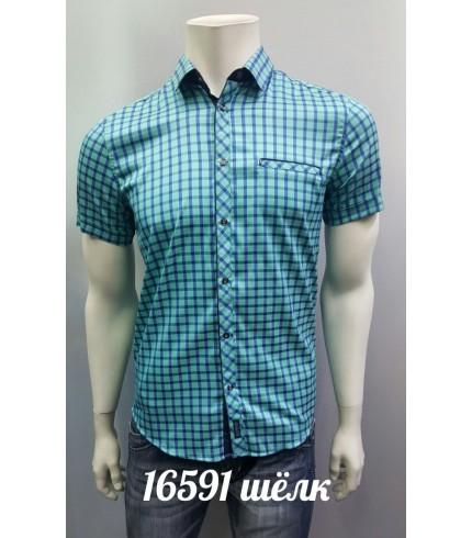 Рубашка AMATO 16591