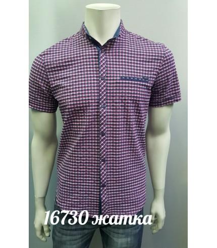 рубашка AMATO 16730