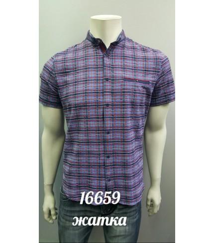 рубашка AMATO 16659